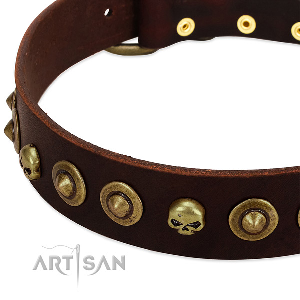 Exquisite studs on full grain leather collar for your dog