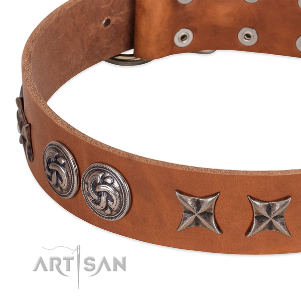 Full grain natural leather collar with significant decorations for your canine