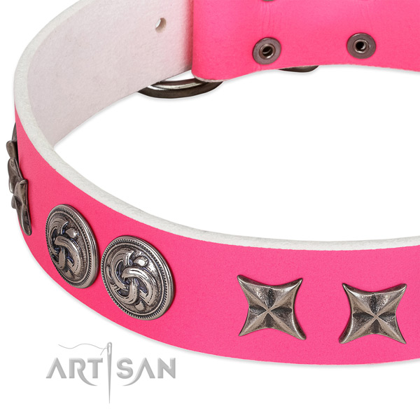 Full grain genuine leather collar with stylish embellishments for your dog