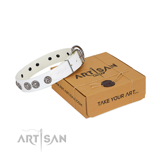 Amazing full grain genuine leather collar for your canine walking in style