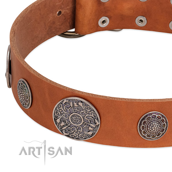 Reliable decorations on full grain natural leather dog collar