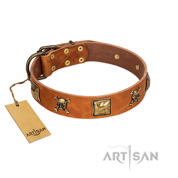 Trendy full grain leather dog collar with rust resistant embellishments