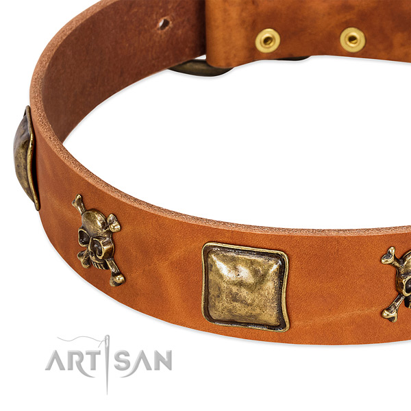 Top notch full grain natural leather dog collar with rust resistant adornments