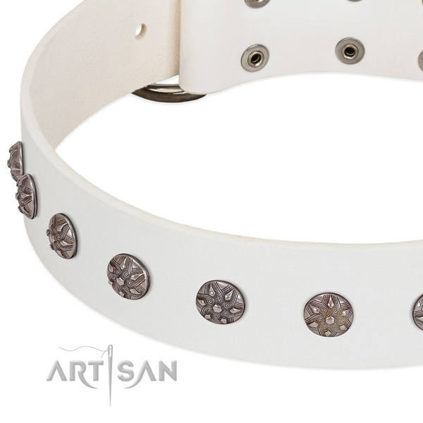 Best quality natural leather dog collar with studs for your pet