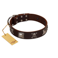 """Nut-Brown Finery"" Embellished FDT Artisan Brown Leather dog Collar with Chrome Plated Crossbones and Plates"