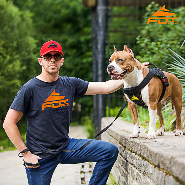Men T-shirt of Best Quality Cotton with Orange Logo for Dog Training