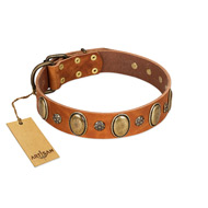 """Total Grace"" FDT Artisan Brown Leather Dog Collar with Eye-catchy Ovals and Small Studs"