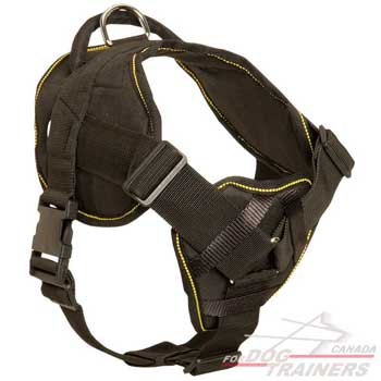 Nylon harness for dogs with chest plate and adjustable straps