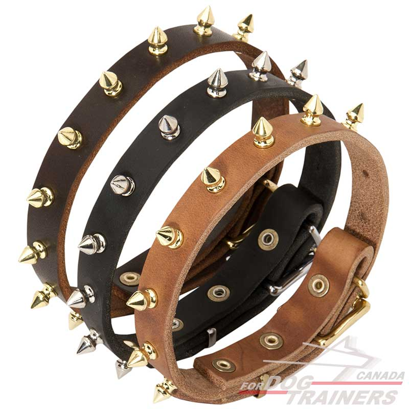 Royal Leather Collar Specially For Your Dog