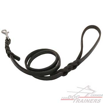 Braided Leather Dog Leash for Canine Walking
