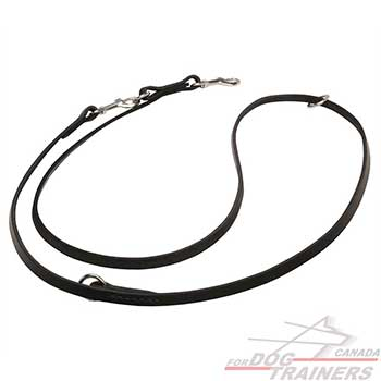 Leather Dog Leash with 2 Snap hooks and Floating Rings