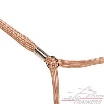 Rust-proof nickel plated fittings on dog combo leash