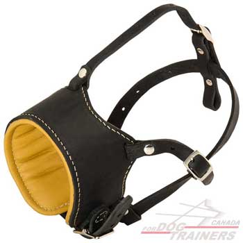 Dog leather muzzle with Nappa padded inside