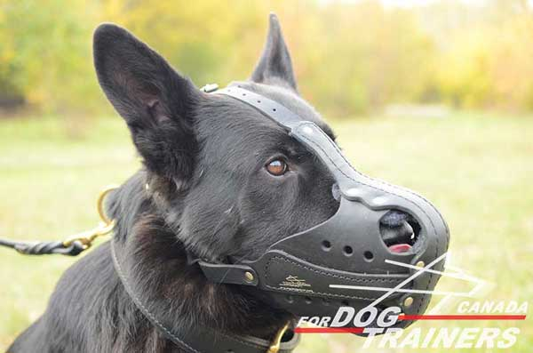German Shepherd leather dog muzzle for different activities