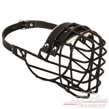 Wire Basket Dog Muzzle with Felt Padding for Batter Comfort