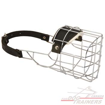 Wire Cage Dog Muzzle for Easy Breathing
