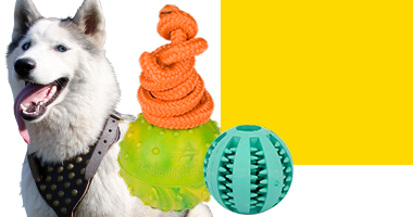 Canada - Get Dog Toys for your dog